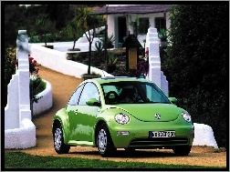 Zielony, Volkswagen New Beetle